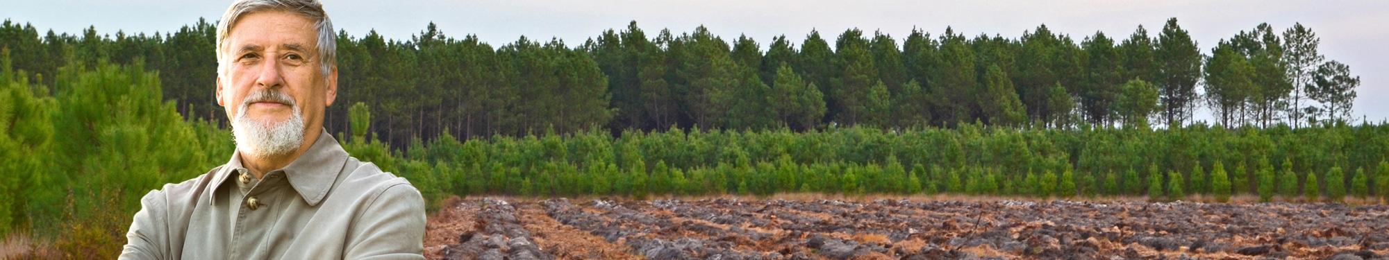 Alliance For u00eats Bois Travaux de sylviculture # Fiscalité Bois Et Forêts